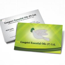 portfolio_design_work_business_card_gangotri_essentia_oils