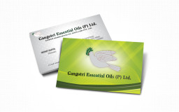 portfolio_design_work_business_card_gangotri_essentia_oils