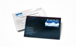portfolio_design_work_business_card_trustfort
