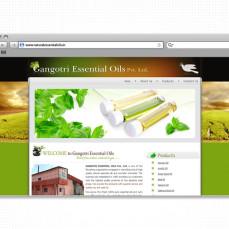 portfolio_web_work_browser_gangotri_essential_oils