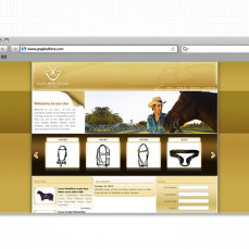 portfolio_web_work_browser_gng