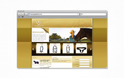 portfolio_web_work_browser_gng