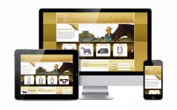 portfolio_web_work_gng