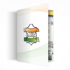 presentation_design_work_brochure_alig
